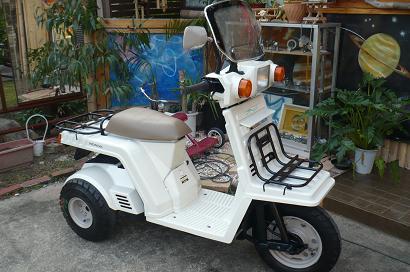 P1340909.JPG